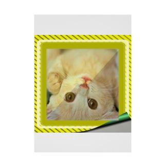 逆さニャンコ(クッキー) Stickable Poster
