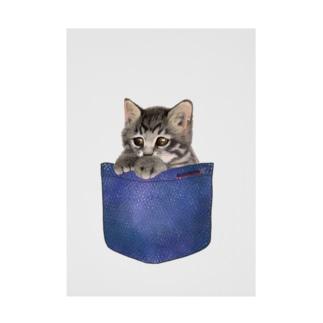 デニムポケットからひょっこり子猫ちゃん Stickable tarpaulin