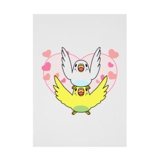 ラブリーセキセイインコ【まめるりはことり】 Stickable poster