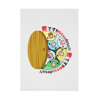 密です!マメルリハさん【まめるりはことり】 Stickable poster