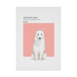 犬 ヤクーチアン ライカ  Stickable poster