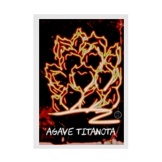 agave titanota【205】 Stickable poster