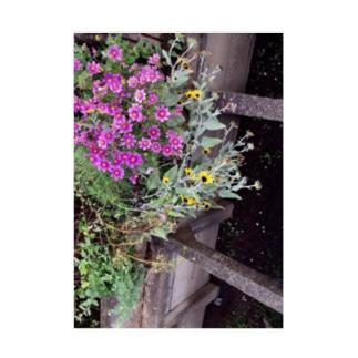 秋の花 Stickable tarpaulin