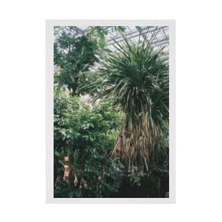 植物の写真 Stickable poster