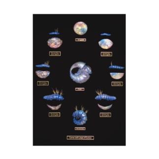 満ち欠け(2019-Ⅰ)のアイテム Stickable poster