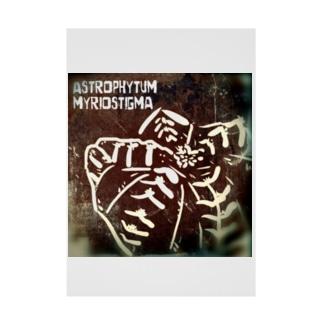 Astrophytum myriostigma Stickable poster