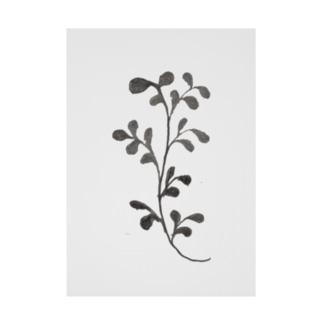 葉のある植物 Stickable poster