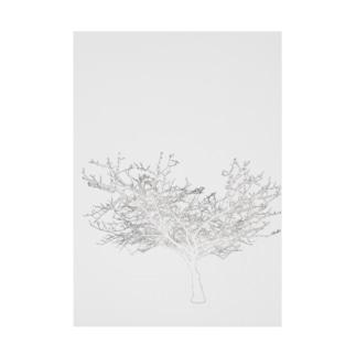 (白抜き)シルエットな木 Stickable poster