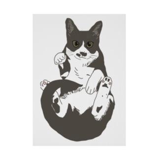 招き猫 ハチワレ Stickable poster