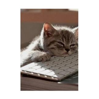 眠る猫 ねこ cat Stickable tarpaulin
