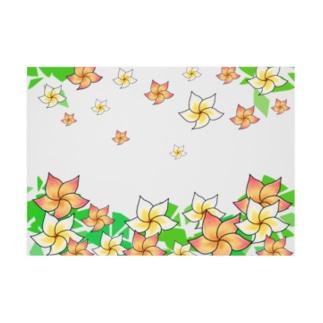 Lily bird(о´∀`о)の舞うプルメリア 横長ターポリン Stickable tarpaulinの横向き