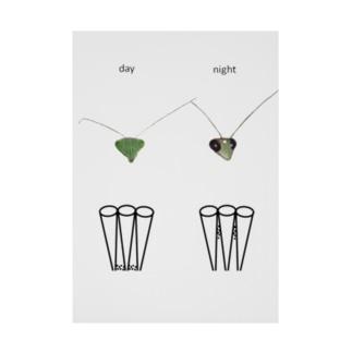 カマキリの昼と夜の複眼(英語、背景白色ver) Stickable poster