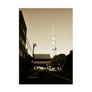 東京都:西日が当たる増上寺山門と東京タワー Tokyo: Temple gate of Zojoji & Tokyo Tower Stickable Poster