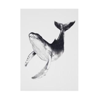 遊泳するクジラ Stickable tarpaulin