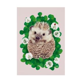 Dear.Hedgehog Soy 吸着ターポリン