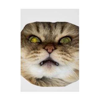 猫ネコショップの猫ネコ(顔) Stickable Poster