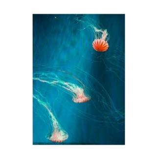 jellyfish (PHOTO) Stickable tarpaulin