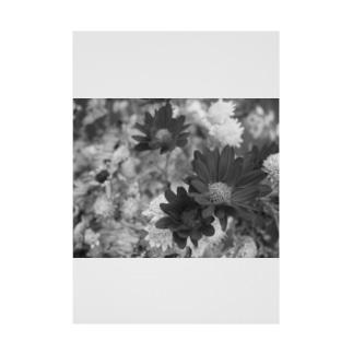 花のモノクロ写真 Stickable poster
