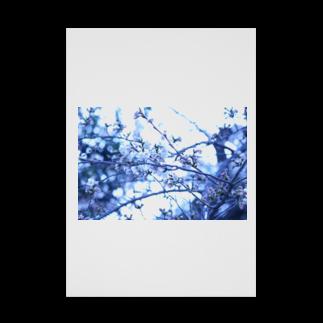 Kengo Kitajimaの桜 Stickable tarpaulin