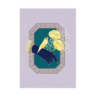 Carnation 胡錦鳥 Stickable poster