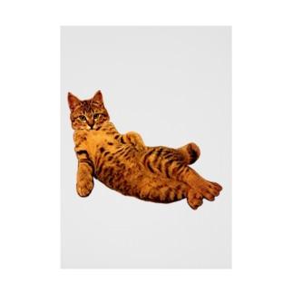 Elegant Cat 2 Stickable tarpaulin