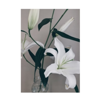 Lily Stickable poster
