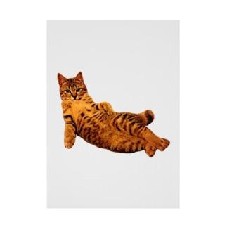 Elegant Cat ① Stickable poster
