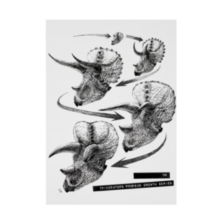 Triceratops prorsus growth series Stickable tarpaulin