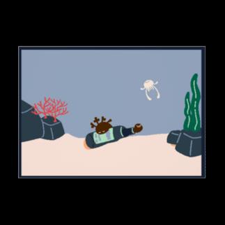 珊瑚/sangoのumi 吸着ターポリン