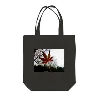 木立と紅葉 Tote bags