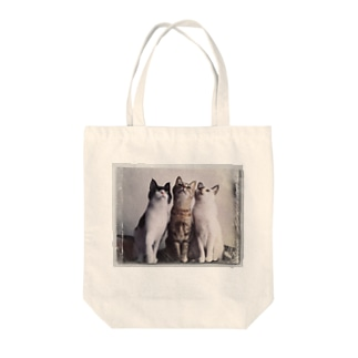 3CATS (カラーver.) Tote bags