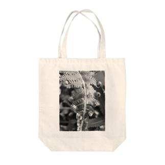 沖縄産のシダ Tote bags