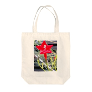 Dreamscapeの思い出・・・開いて・・・ Tote bags