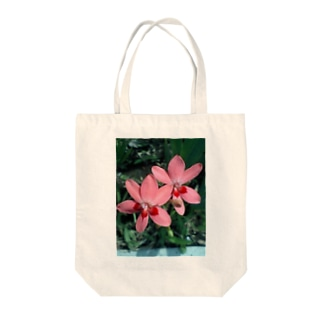 Dreamscapeの恋人たちの思い出日記 Tote bags