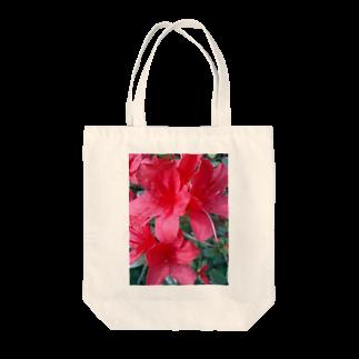 Dreamscapeの引き立つ赤さ Tote bags