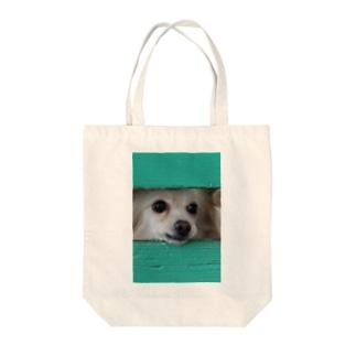隙間から顔を出す犬 Tote bags