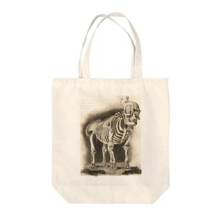 銅版画による人体骸骨 Tote bags