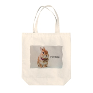 Wearing a beige collar PETER ベージュのつけ襟ピーター Tote bags