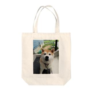 柴犬マロンさん Tote bags