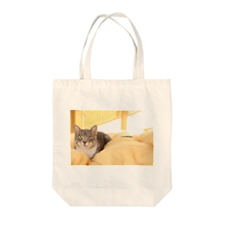 cat_20181116_0681' Tote bags