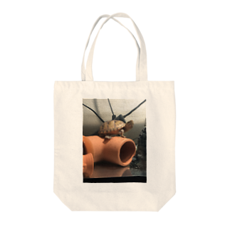 ⭐️ナイト⭐️のおチビ(ミシシッピニオイガメ) Tote bags