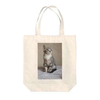 cat_20190306_0982 Tote bags