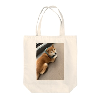 048styleハナちゃん‼️泥棒style Tote bags