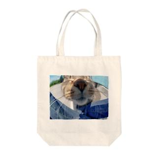 魚眼越し猫ちゃん Tote bags