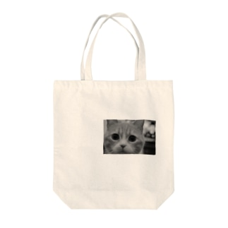 詰め寄る猫 Tote bags