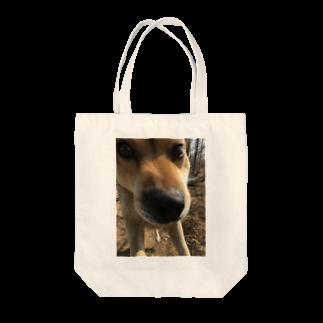 tomo4のゴンタ Tote bags