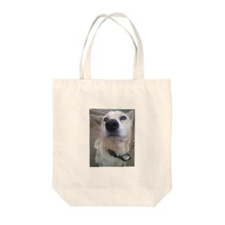 雑種犬明後日をみる Tote bags