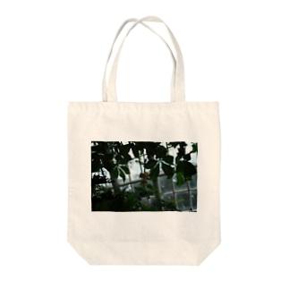 バオバブ Tote bags