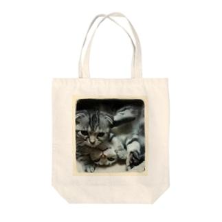 *猫シリーズ*二人は仲よし❤~ポロ&マロ~ Tote bags
