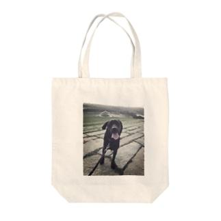 ✨ALO✨ Tote bags